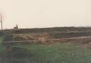 Hausbau 1991